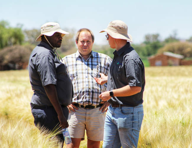 Farmers in South Africa